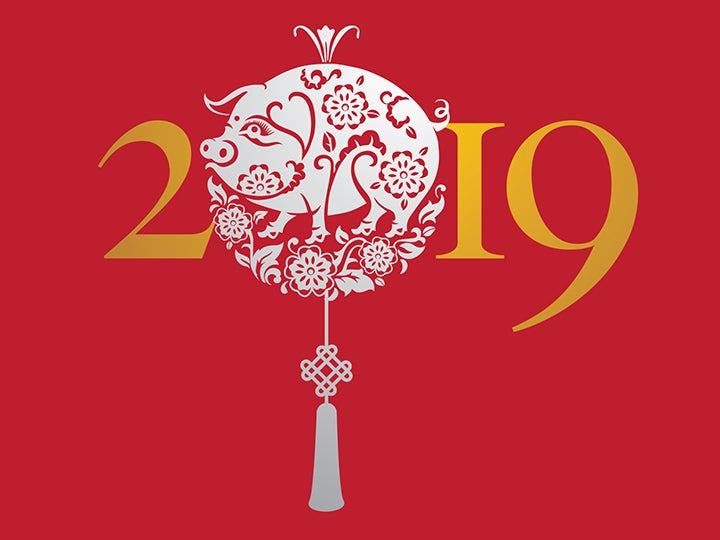 More Info for Chinese New Year Celebration Concert