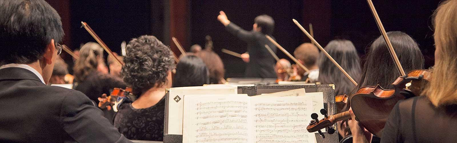 Audition Information | New Jersey Symphony Orchestra
